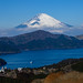 Fuji and Lake Ashinoko