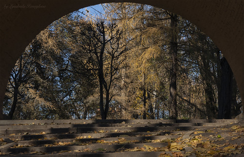 Nature in the arch