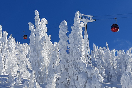 Sněhové hody, které se prohnaly střední Evropou a dočasně znamenaly dopravní, lavinové i provozní komplikace, jsou u konce. Situace se uklidnila, sníh slehává, sjezdovky jsou upravené a střediska odříznutá od světa js...