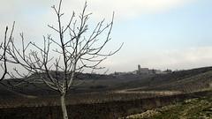 Páganos - Laguardia