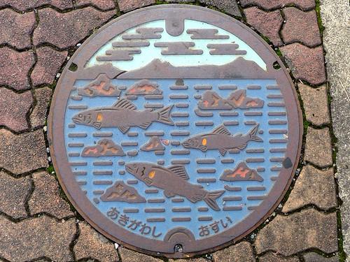 Akigawa Tokyo, manhole cover (東京都秋川市のマンホール)