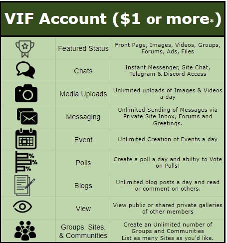 vif account info