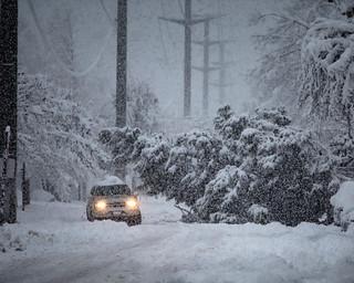 Snow in Eugene