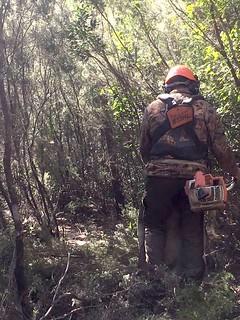 Un travailleur sur le sentier RG de la Sainte-Lucie
