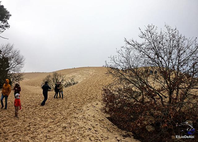 Duna de Pilat, la duna más grande de Europa 7