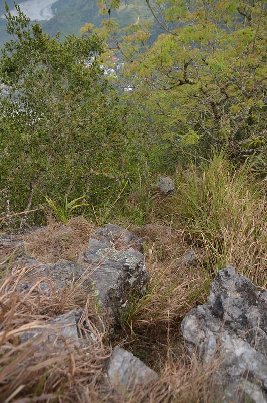 965峰東南稜裸岩瘦稜 4