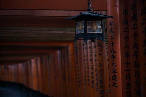 thousands of vermilion torii gates