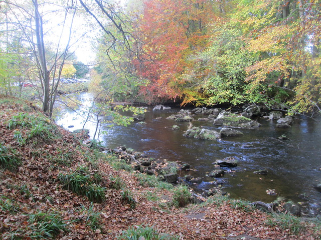 River at Huntly Castle