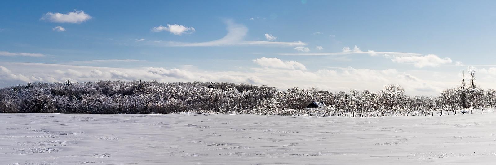 Ah ! Comme la neige a neigé... 46842676872_bf3fad64ad_h