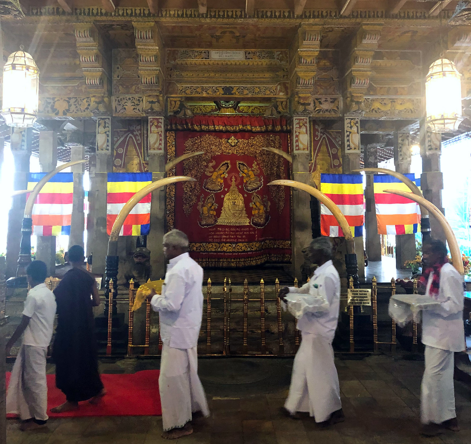Kandy en un día, Sri Lanka kandy en un día - 47013344782 7df121cc52 h - Kandy en un día, Sri Lanka