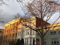 Fading sunlight, houses on 22nd Street NW, Washington, D.C.