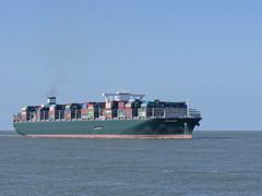 Container Ship -  'Ever Golden' - Noordzee