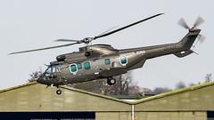 Eurocopter AS332L2 Super Puma CN-AZT Gendarmerie Royale - Morocco - Photo of Ichtratzheim