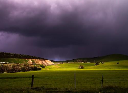 storm field 03
