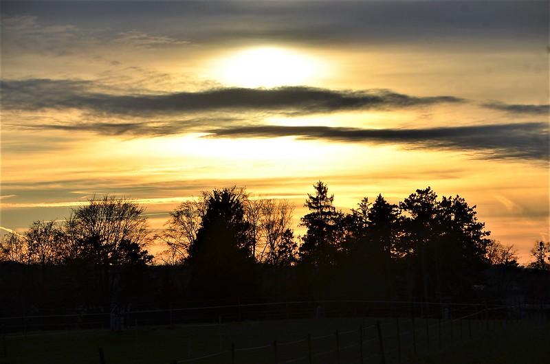 Sunset 04.01 (5)