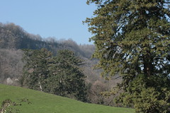 Vaux-Sur-Poligny (39) Culée de Vaux 24 mars 2019 00141