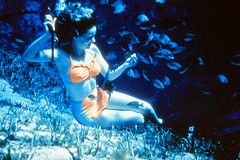 Vintage Slide of Woman Underwater Feeding Fish