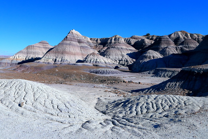 IMG_7077 Badlands in Blue Forest, Petrified Forest National Park