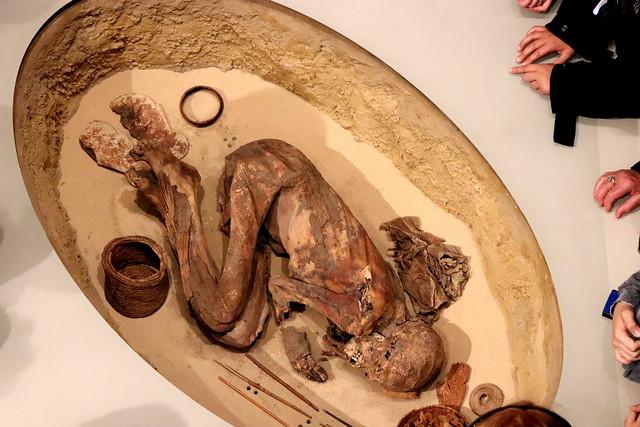 Momias del Mejores Museo Egipcio de Turín