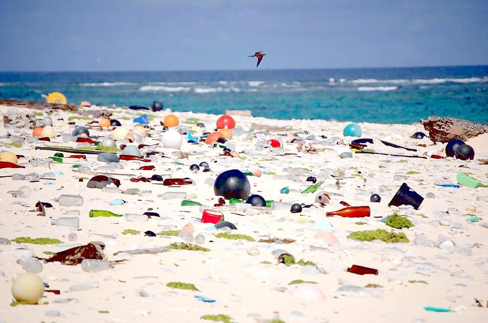 Пляжи Гавайев после тропического шторма