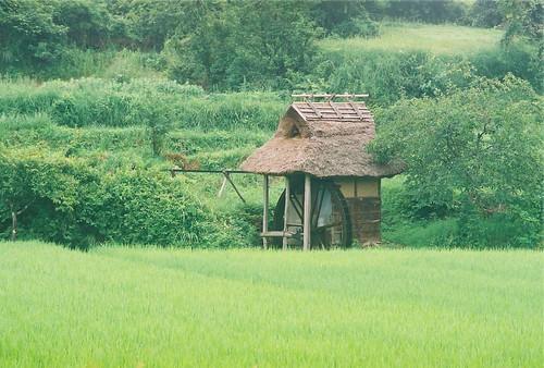 津山市 桐の木水車