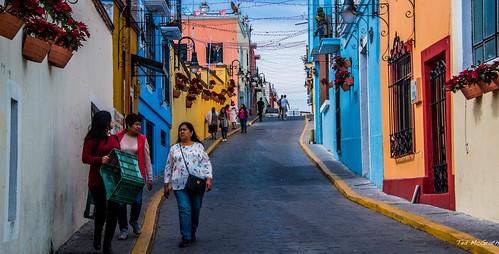 2018 - Mexico - Atlixco - Flower Pot Road - Calz 16 de Septiembre