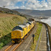 97303, 97304, 6C70 Llanaber by welsh snapper