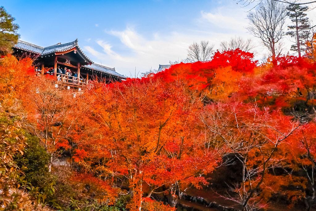 kyoto-temples-alexisjetsets-18