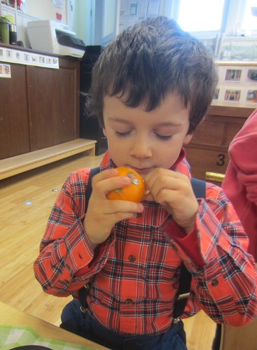 smelling the clementine