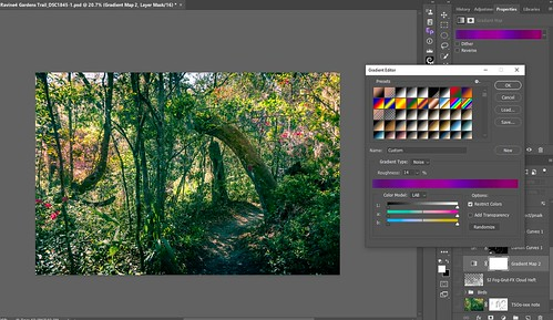 Screenshot of the Gradient Map settings for the Ravine Gardens Trail image