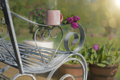 Tea and Tulips...
