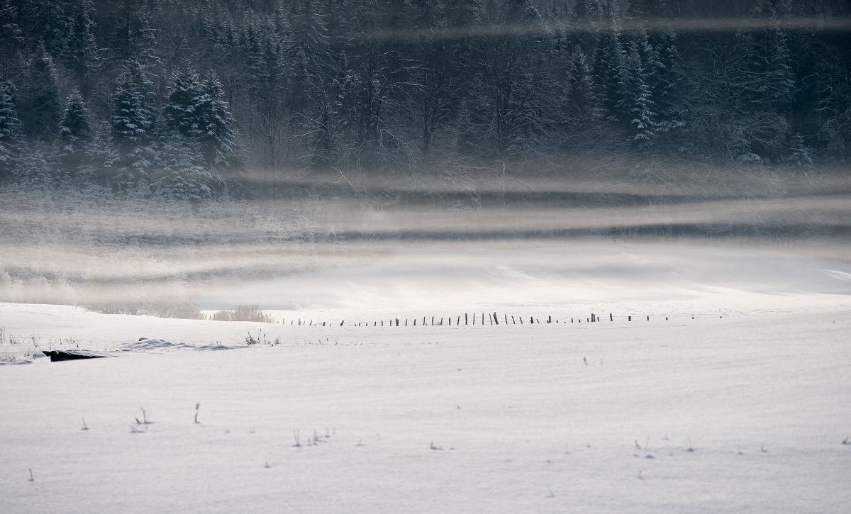 Un peu de neige 46800897782_85486ca470_o