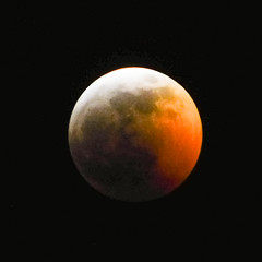 Super Blood Wolf Moon of 2019