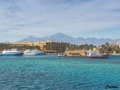 Hurghada Marina, Hurghada, Egypt