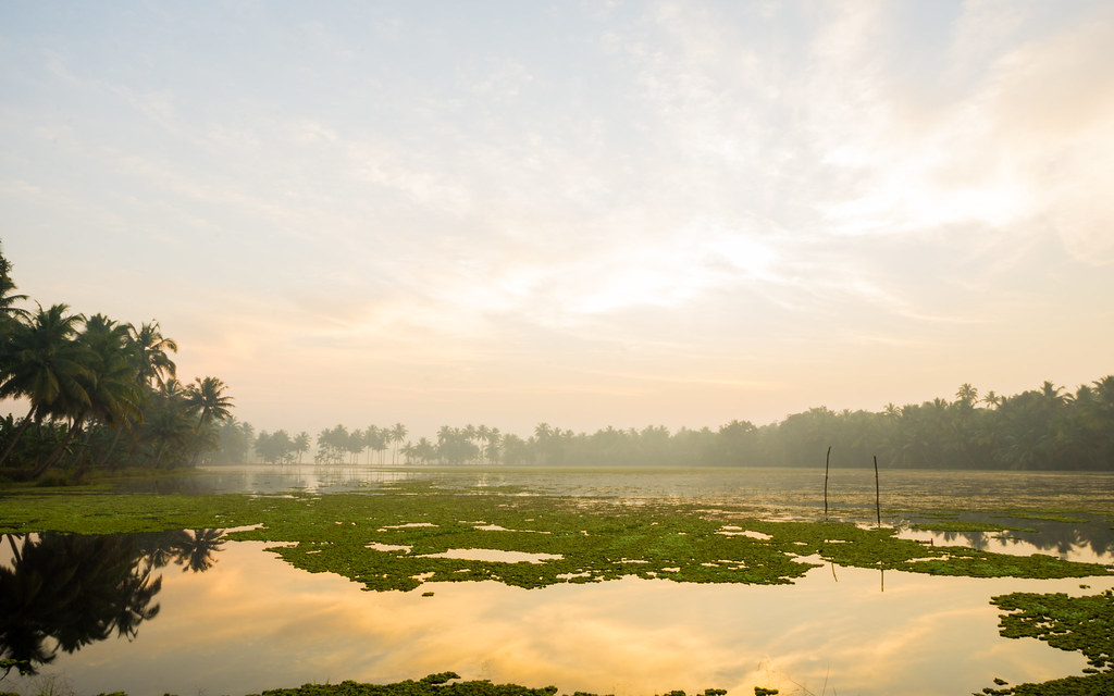 Sunrise in Kumarakom