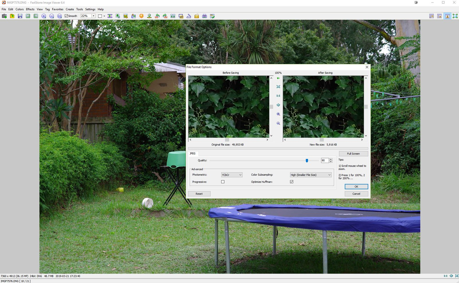 FastStone Image Viewer and extracting Jpg's from RAW DNG's