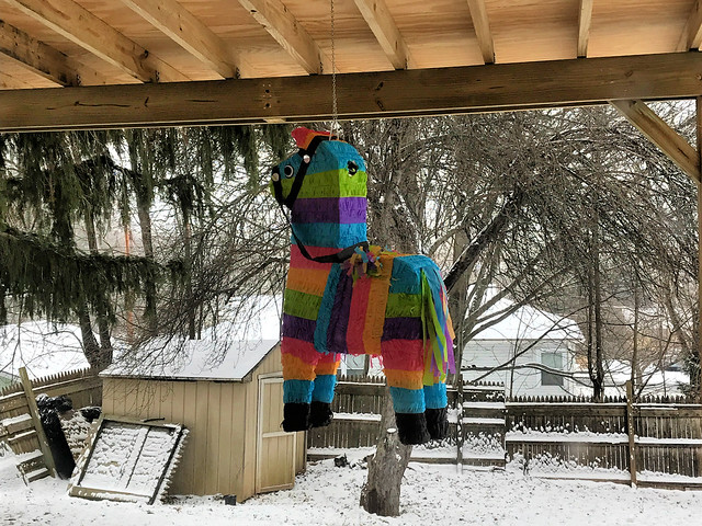 Winter piñata
