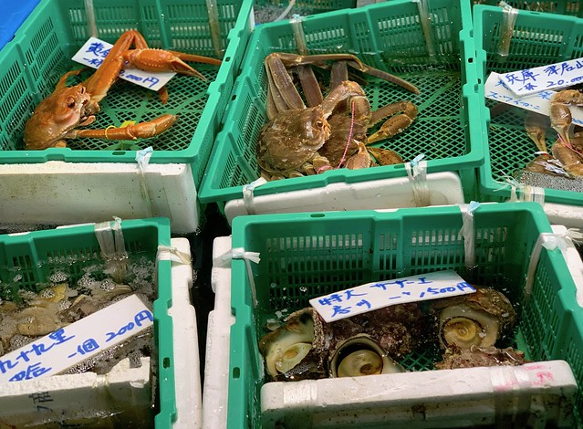 Tsukiji fish market 2018 39