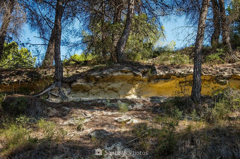 Estratificación de terreno calcáreo en el Fondo de la Torreta