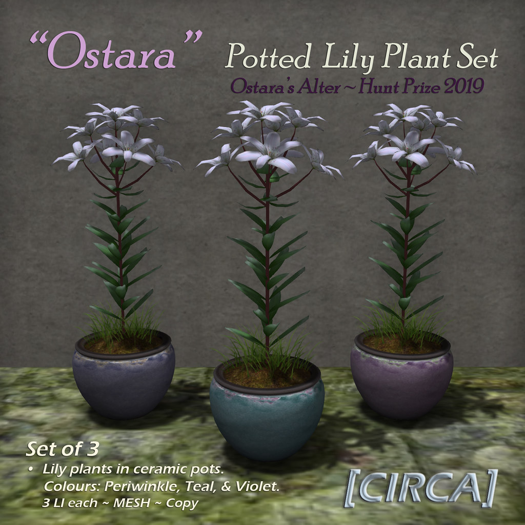"@ Ostara's Alter Event | [CIRCA] – ""Ostara"" – Potted Lily Plant Set – Hunt Prize"