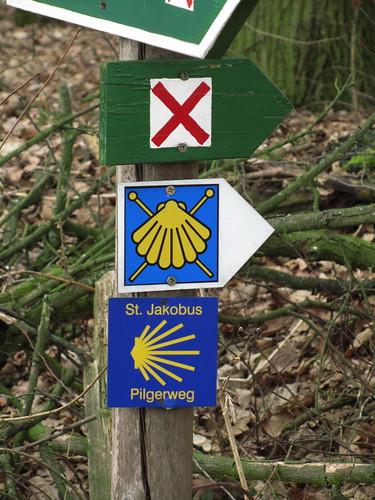 20110315 0202 131 Jakobus Muschelsternzeichen