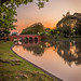 Pedestrian Bridge and Roots @ Sunset, Chatuchak Park, Bangkok