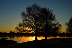 Sunrise at Woodlawn Lake