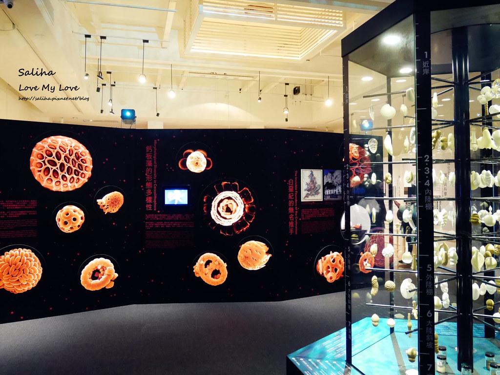 台北車站附近景點推薦雨天親子好玩去處台灣博物館土銀展示館展覽 (3)