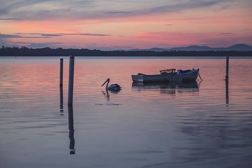 Fishing Boat on Wallis Lake