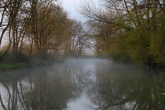 juste un voile de brume - just a haze of mist - Photo of Trochères