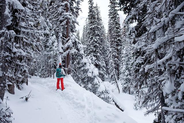 Snowshoeing - Rawson Lake - Jan 2019-4