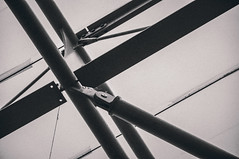 Collision - Photo of Compeyre