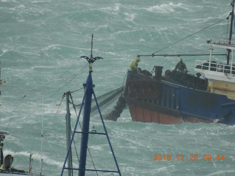中國漁船越界拖網 澎湖南方四島珊瑚浩劫