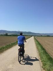 Jeff biking Colmar to Eguisheim